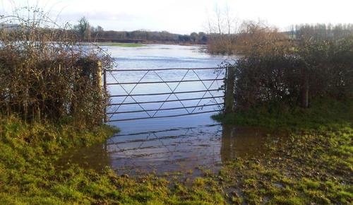 North Dorset-20121221-00623