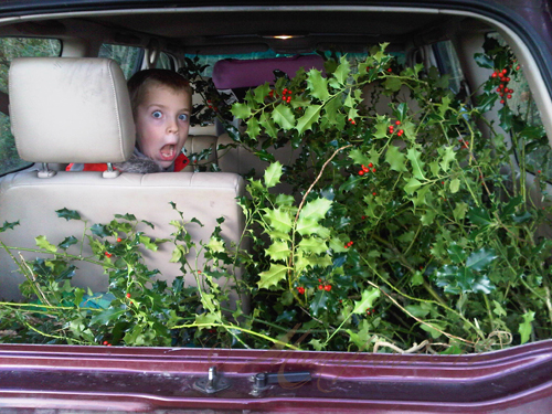 car full of holly for Christmas